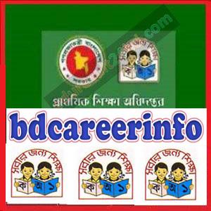 Primary Education Job Circular 2018