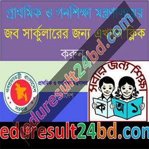 Primary Mass Education Job Circular 2016