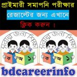 PSC Exam Result 2017 DPE.GOV.BD